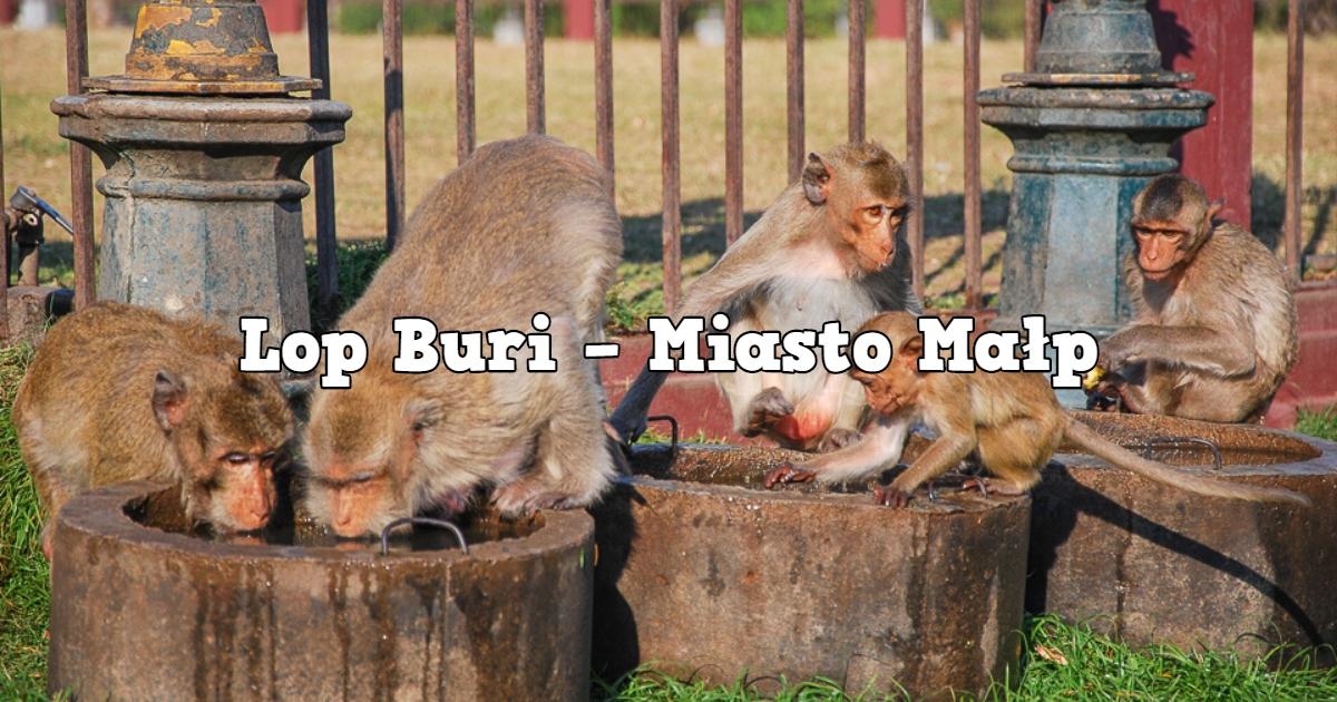 Lop Buri – Miasto Małp