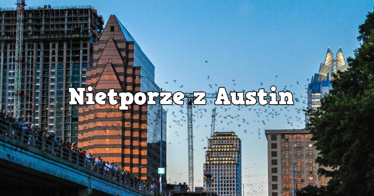 Nietoperze z Austin