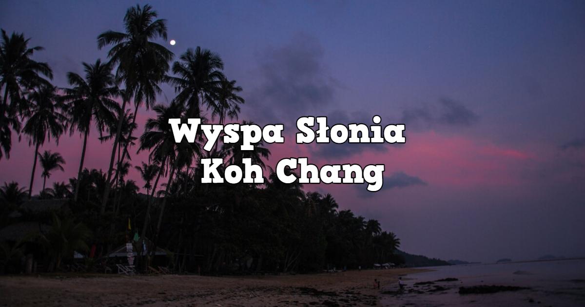 Witamy na Wyspie Słonia