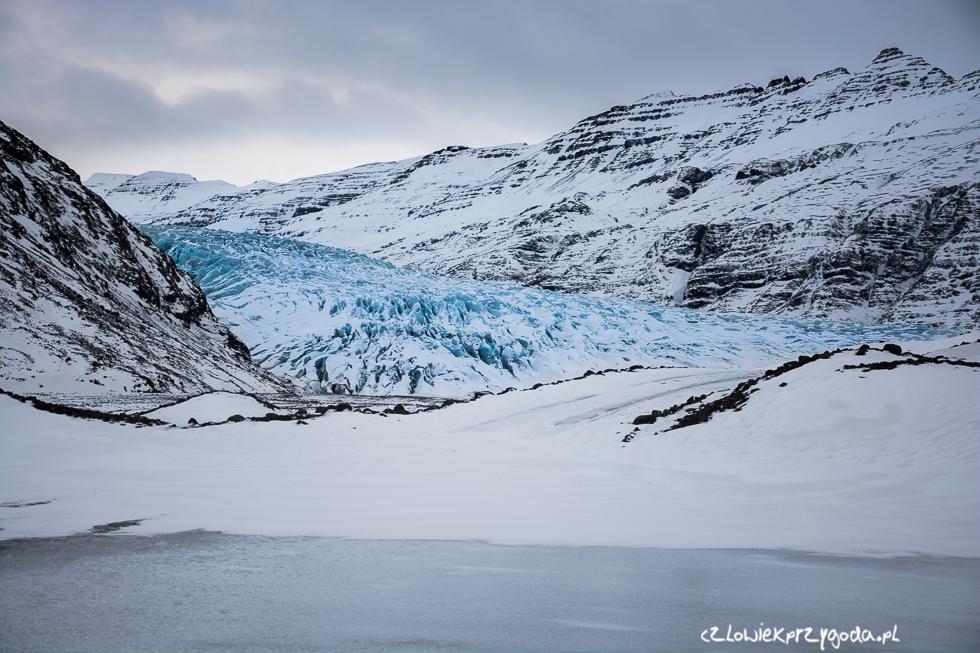 Jęzor lodowy Fláajökull