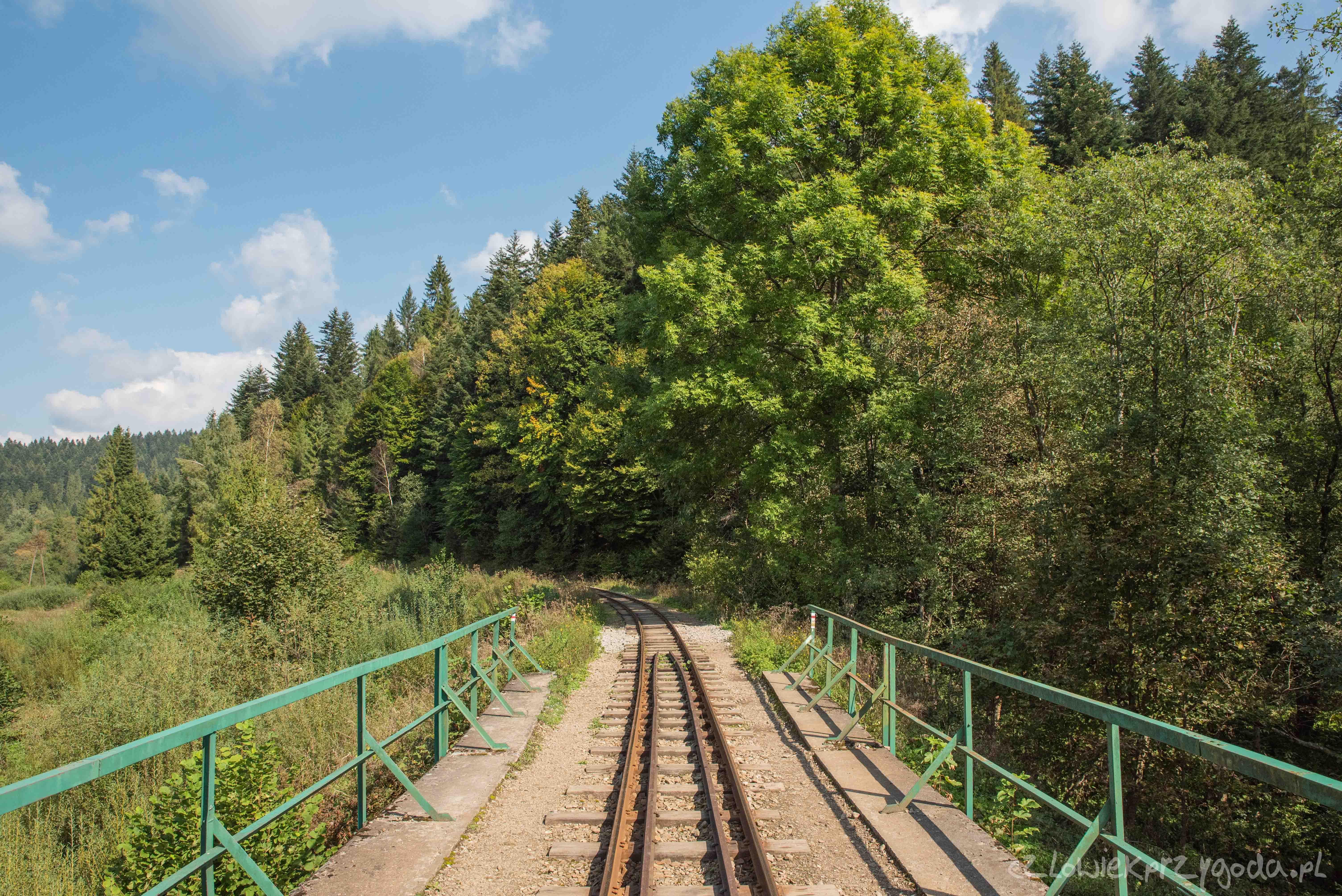 Szlaki w Bieszczadach