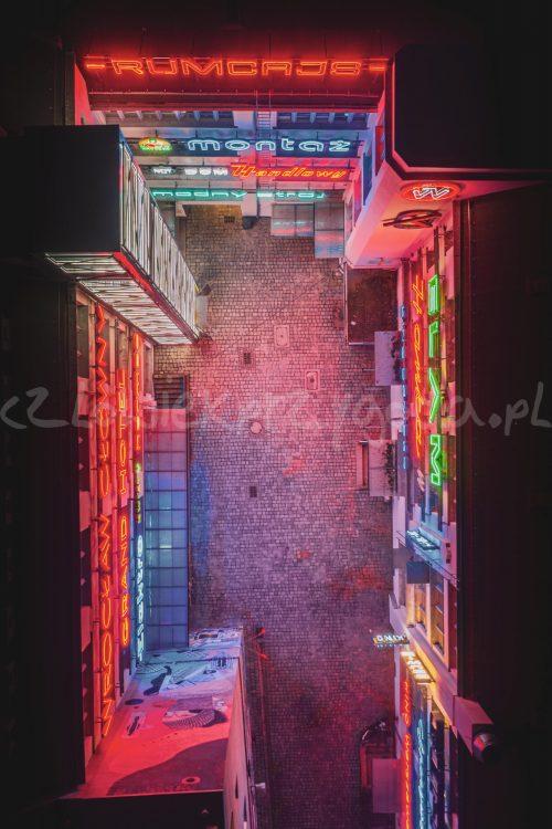 galeria neonów