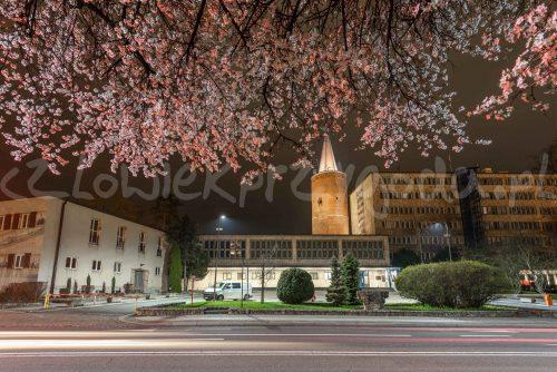Wiosna na Piastowskiej
